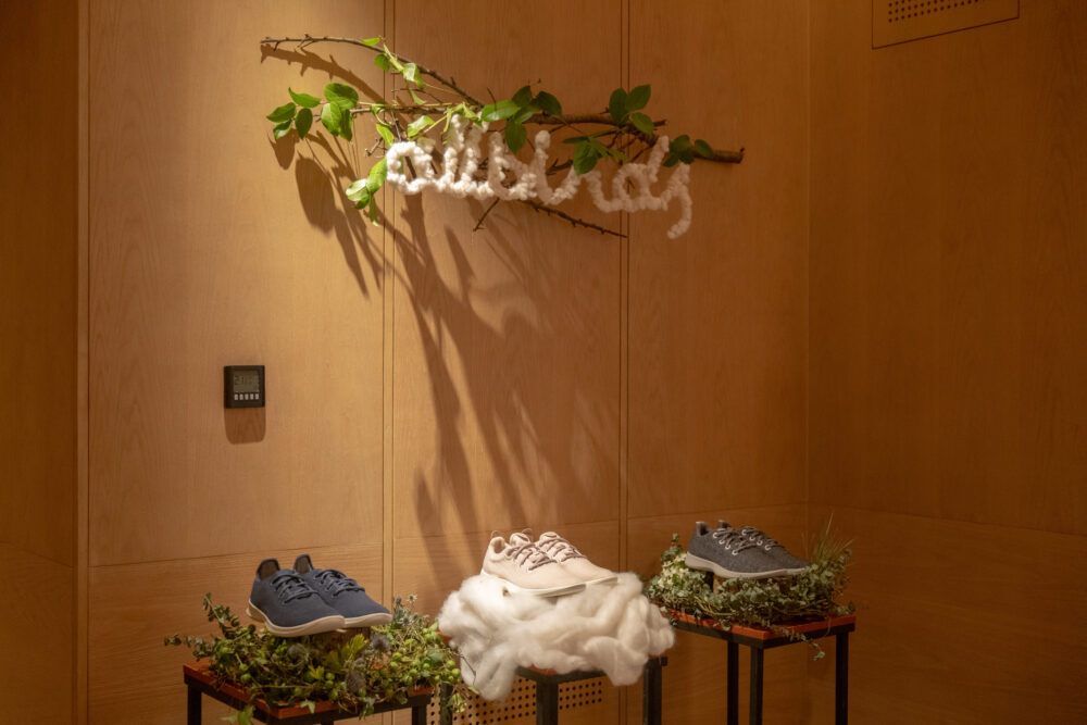 Allbirds Cocktail Event