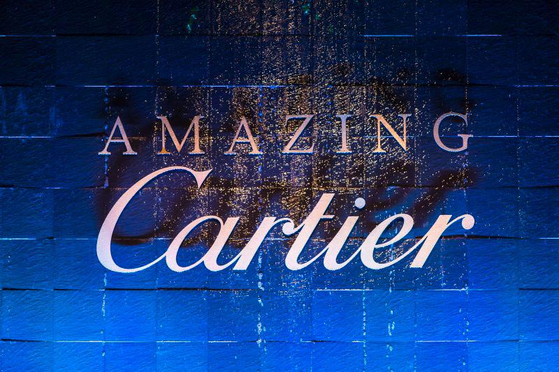 Cartier - Amazing Cartier